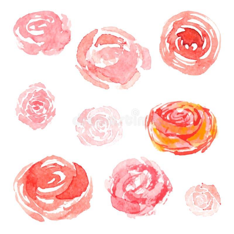 As flores da aquarela, vector a coleção floral ilustração royalty free