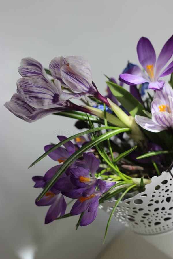 As flores da beleza foto de stock