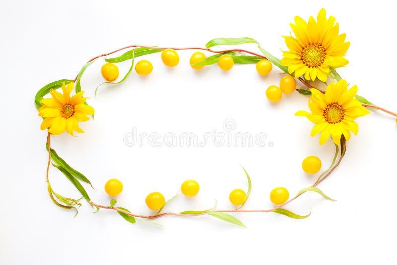 As flores da beleza colocam horizontalmente o quadro da ameixa de cereja e dos galhos da opinião superior do espaço decorativo da foto de stock royalty free