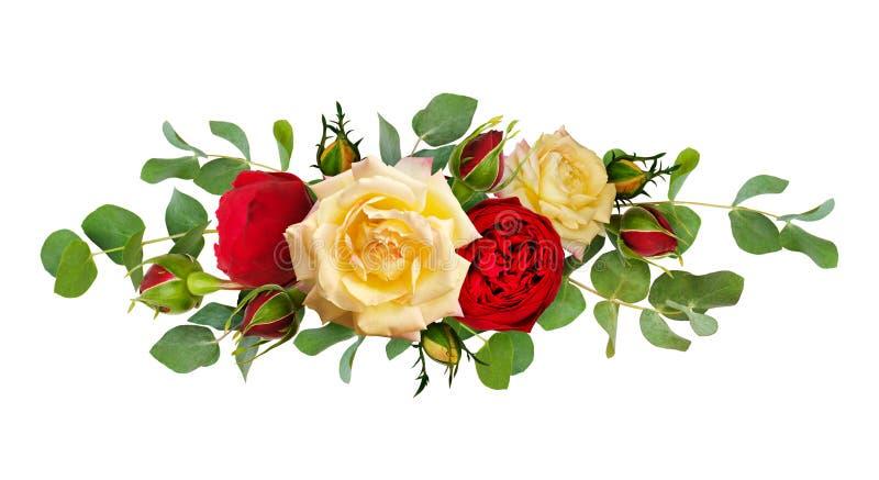 As flores da rosa do vermelho e do amarelo com eucalipto saem em uma linha arr ilustração do vetor