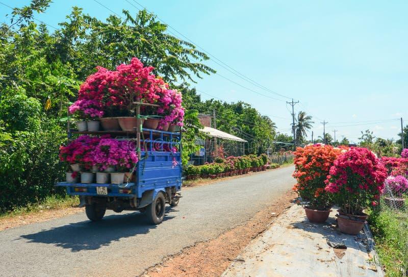 As flores levando do caminhão na rua no delta de Mekong, Vietname foto de stock
