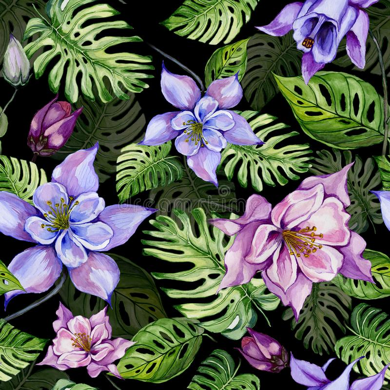 As flores ou o aquilegia aquilégia brilhante bonito e o monstera exótico saem no fundo preto Pintura da aguarela ilustração royalty free
