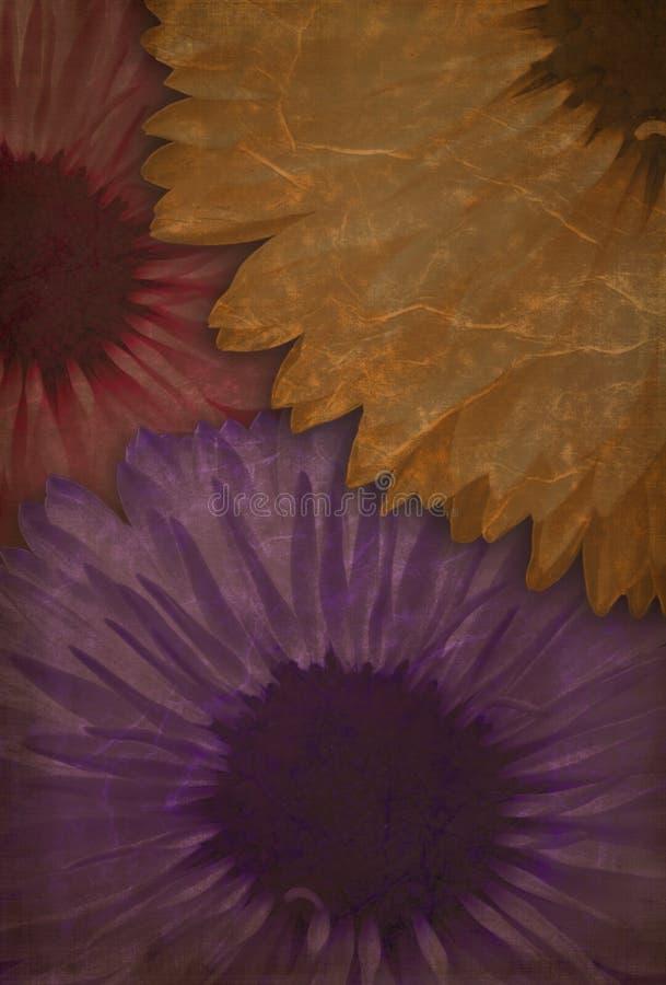 As flores sujas fecham-se acima ilustração royalty free