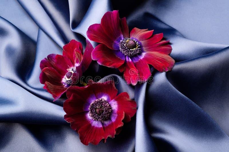 As flores violetas encontram-se em uma tela ondulada de seda brilhante azul fotografia de stock