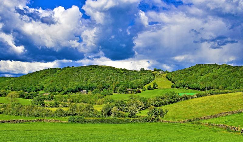 As florestas peça para a pradaria aberta, perto da cabeça de Wasdale, distrito do lago, noroeste, Inglaterra imagens de stock