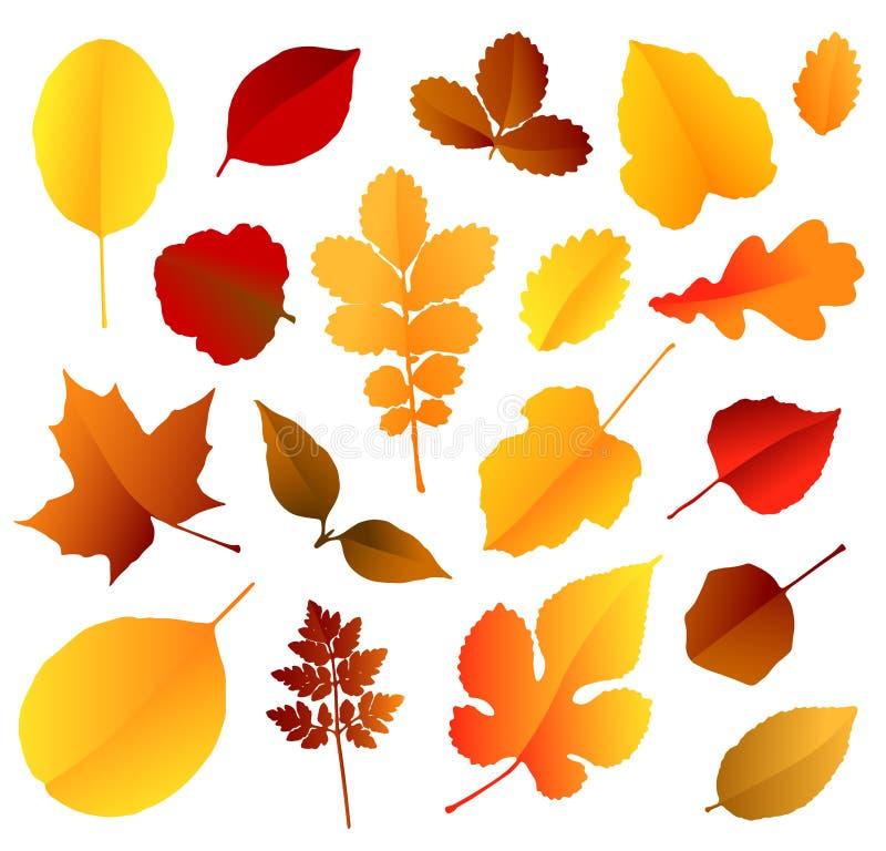 As folhas de outono coloridas ajustaram-se isolado no fundo branco Ilustra??o do vetor imagens de stock