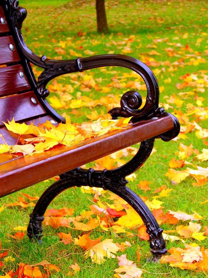 As folhas do amarelo encontram-se no banco no parque no outono fotografia de stock