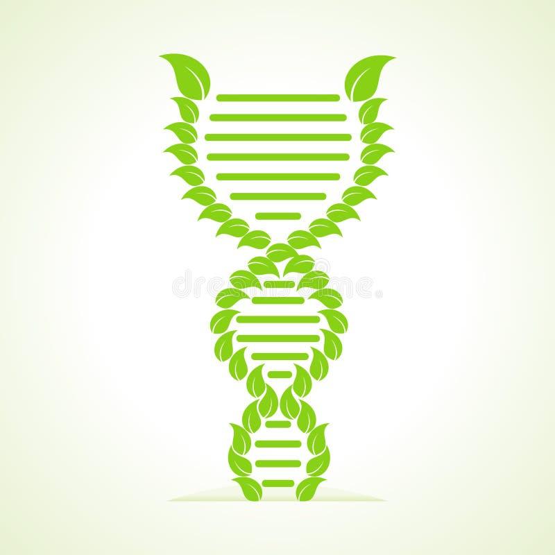 As folhas fazem uma costa do ADN ilustração stock