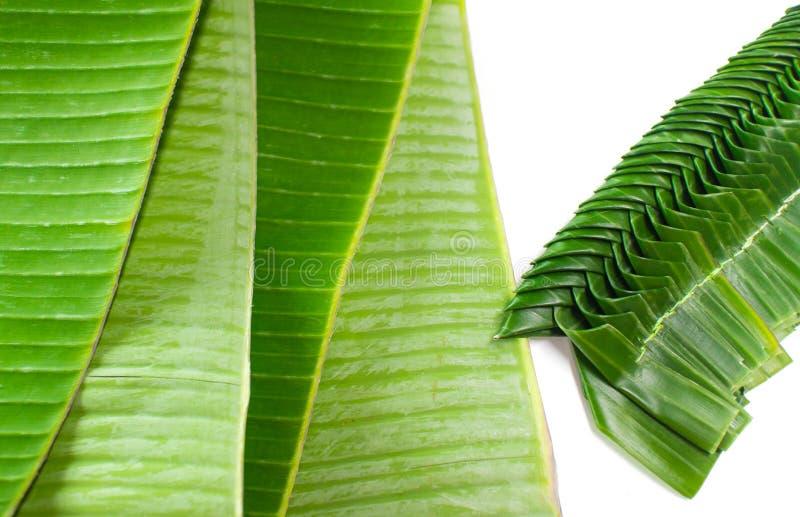As folhas frescas da banana e alguma da banana que as folhas tecem a preparação para lótus deram forma à embarcação das folhas da imagens de stock