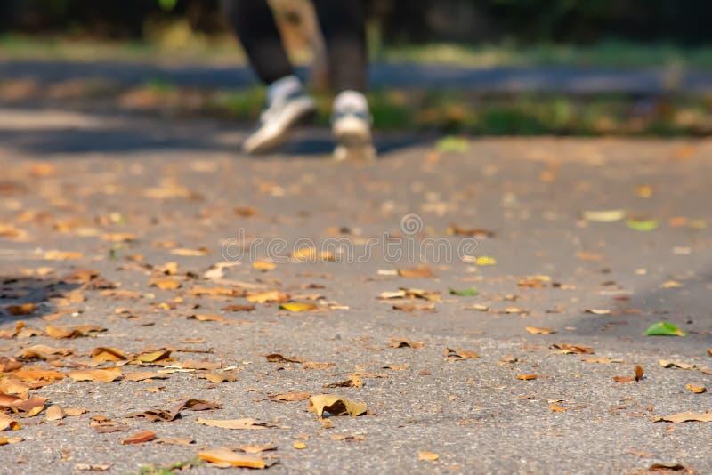 As folhas no asfalto de borracha para o corredor da estrada e o pé r do borrão imagem de stock royalty free