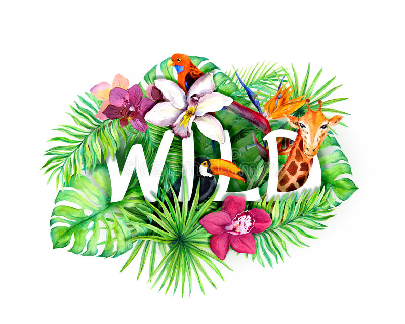 As folhas tropicais, flores exóticas, animais da selva, rotulam selvagem watercolor ilustração do vetor