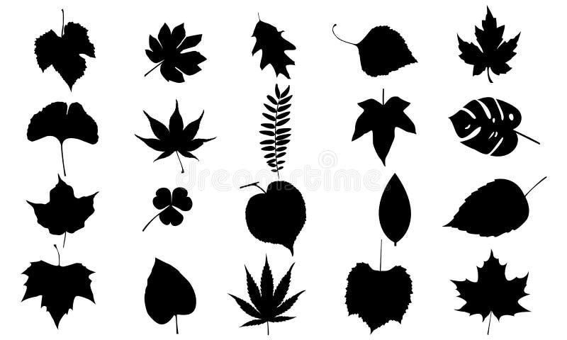As folhas vector o grupo foto de stock