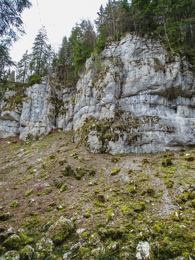 As formações de pedra aproximam a cachoeira do du doubs do saut na região de d fotos de stock royalty free