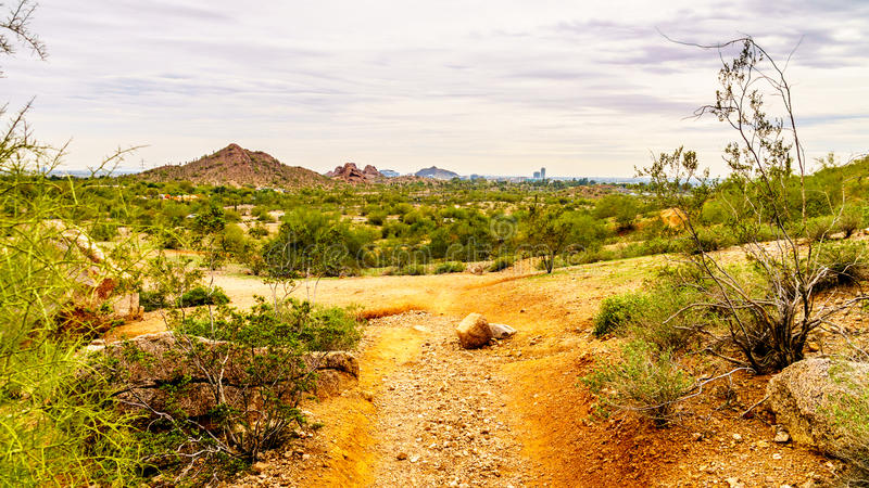As fugas de caminhada em torno dos montículos do arenito vermelho de Papago estacionam perto de Phoenix o Arizona foto de stock royalty free