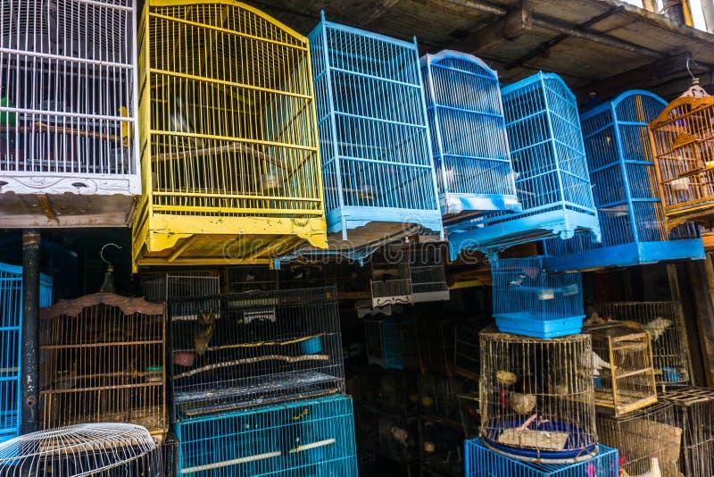 As gaiolas coloridas e bonitas feitas da madeira e do bambu vendem no mercado animal tradicional Depok recolhido foto Indonésia imagens de stock royalty free