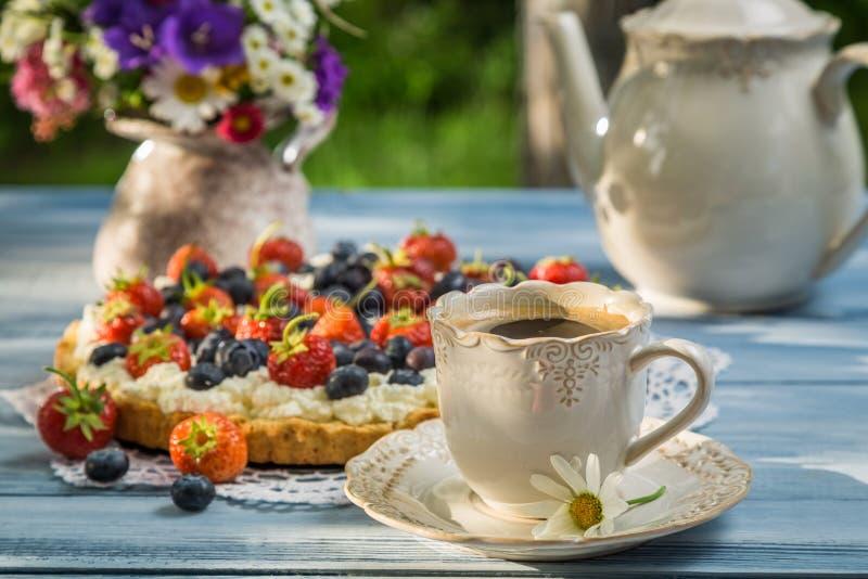 As galdérias do café e do fruto desempenharam serviços no jardim foto de stock royalty free