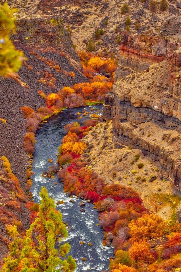 As gargantas da rocha formam ao longo do rio de Deschutes aqui em Oregon central imagens de stock royalty free
