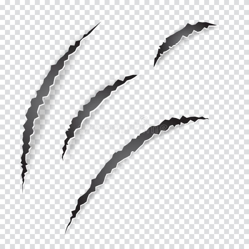 As garras riscam o animal ou o monstro no fundo transparente ilustração do vetor