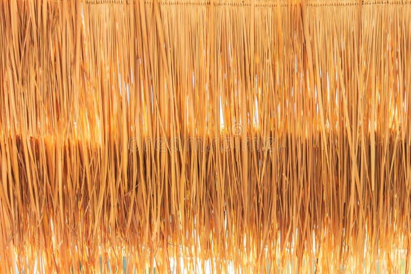 As gramas douradas do close up cobrem com sapê o telhado para o papel de parede imagem de stock