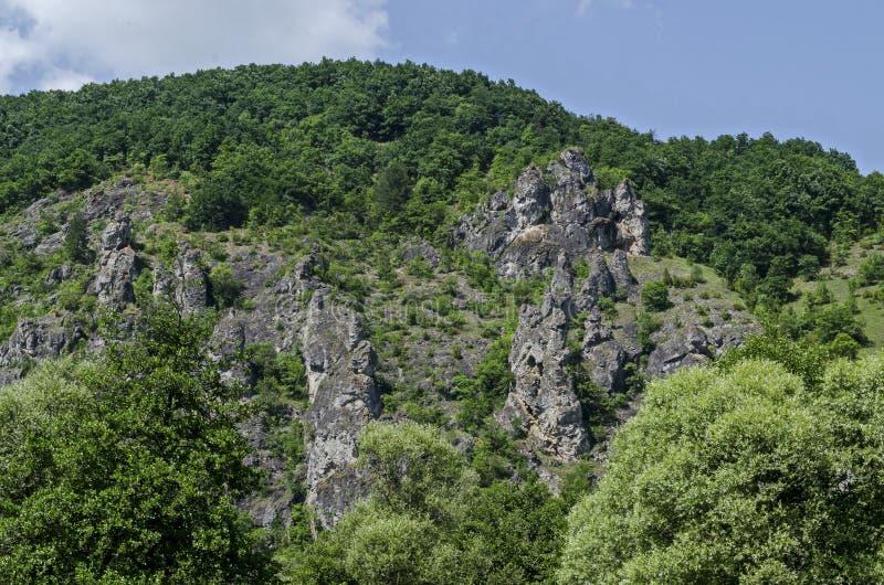As grandes e rochas bem formadas assemelham-se a seres humanos, a animais e a outros formulários estranhos do pico Garvanets ou d imagem de stock