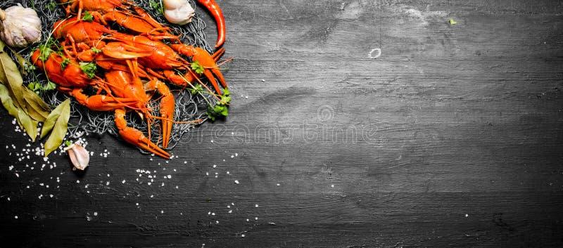 As guloseimas do alimento Lagostins fervidos frescos com especiarias e ervas fotografia de stock royalty free