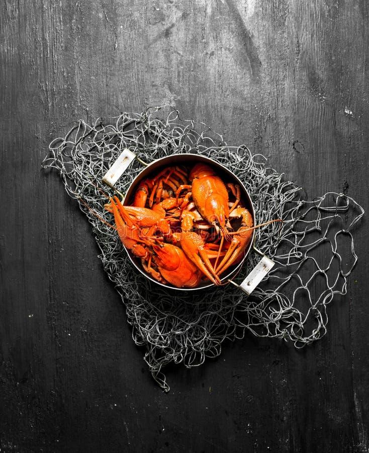 As guloseimas do alimento Lagostins fervidos frescos no potenciômetro fotos de stock