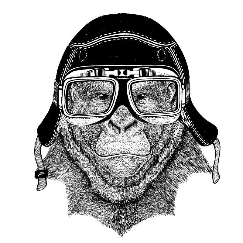 As imagens do vintage do macaco do gorila para o t-shirt projetam para a motocicleta, bicicleta, velomotor, clube do 'trotinette' ilustração do vetor
