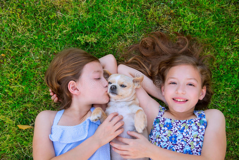 As irmãs gêmeas que jogam com chihuahua perseguem o encontro no gramado foto de stock royalty free