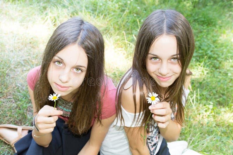 as irmãs gêmeas sentam-se em um campo do fundo com as flores nas mãos imagens de stock royalty free