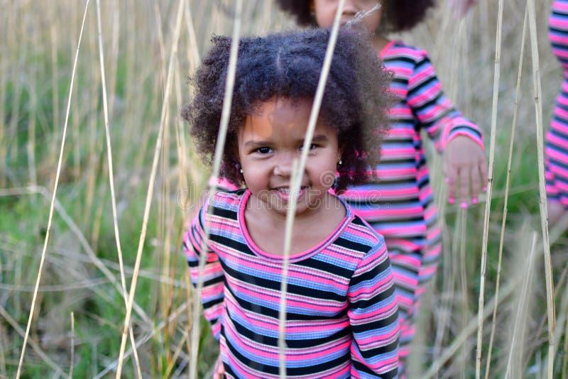 As irm?s afro-americanos est?o jogando em irm?s grasscurly afro-americanos secas altas em vestidos da dan?a na grama e nos arbust fotos de stock