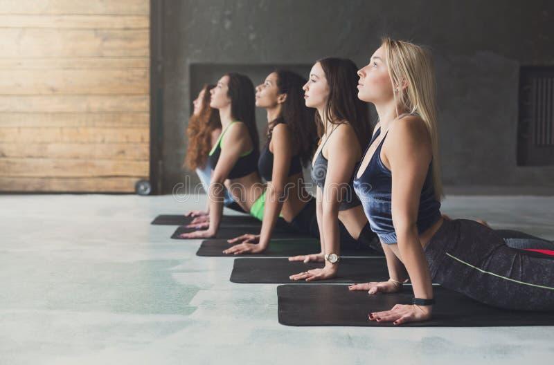 As jovens mulheres na ioga classificam, esticão da pose da cobra foto de stock