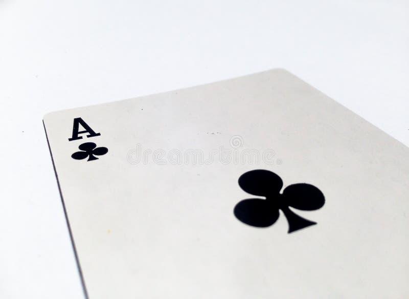 As koniczyn, klubów karta z Białym tłem/ obraz royalty free