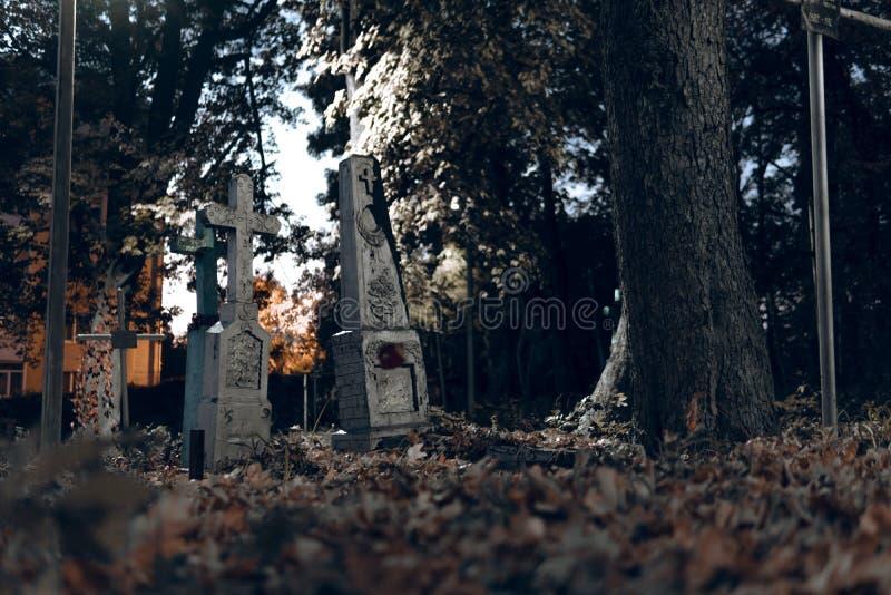 As lápides velhas arruinam na floresta do autmn, cemitério na noite, noite, luz de lua, foco seletivo, backgrond do projeto de co imagem de stock royalty free