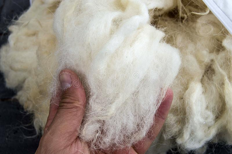 As lãs dos carneiros, imagens de lãs, fazem as edredões e os descansos com lãs naturais, imagem de stock royalty free