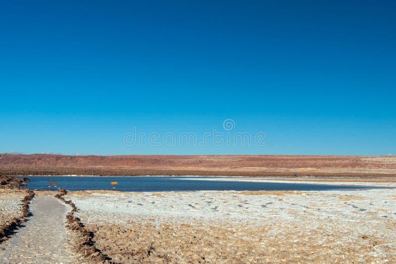 As lagoas altiplanic escondidas Escondidas de Lagunas de Baltinache: lagos de sal em Salar do deserto de Atacama, o Chile fotos de stock royalty free