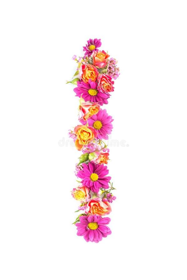 As letras e os números feitos das flores vivas isoladas no fundo branco, fazem o texto com alfabeto das flores, ideia exclusiva p imagem de stock