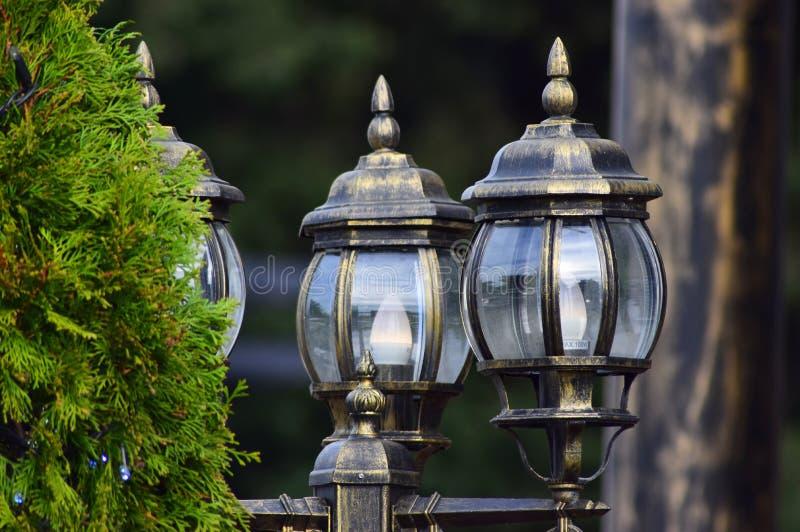 As luzes de rua bonitas fizeram do vidro ao lado de um pinheiro imagem de stock royalty free