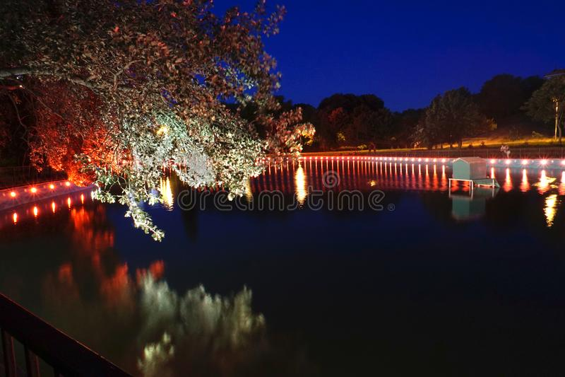 As luzes vermelhas em torno da lagoa que faz árvores olham o rosa escuro na noite Exposição longa imagem de stock royalty free