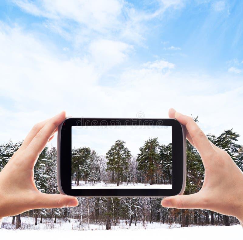As mãos com smartphone tomam imagens foto de stock