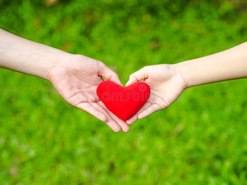 As mãos da forma do coração do homem e da mulher guardam o coração vermelho Pares, amor, conceito sDay do Valentim ' imagens de stock royalty free