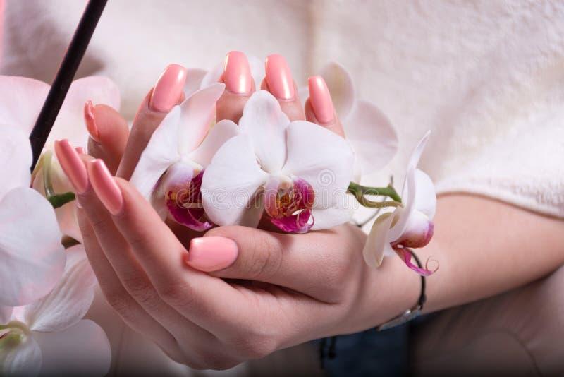 As mãos da menina com os pregos do rosa da mola lustram guardar a flor branca da orquídea nas mãos fotos de stock