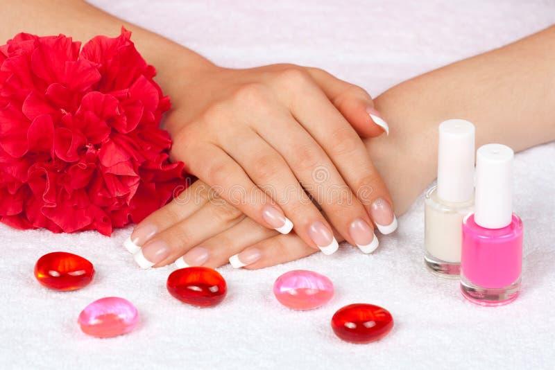 As mãos da mulher bonita com tratamento de mãos francês perfeito imagem de stock royalty free