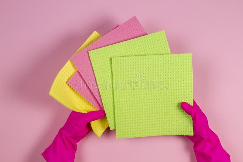 As mãos da mulher com as luvas de borracha cor-de-rosa guardam muitas esponjas sobre o fundo cor-de-rosa foto de stock