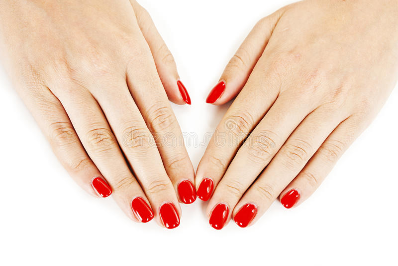As mãos da mulher manicured bonita com verniz para as unhas vermelho imagem de stock