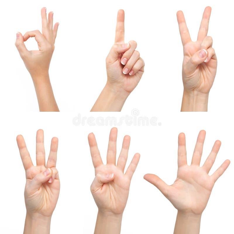 as mãos da mulher mostram o número foto de stock