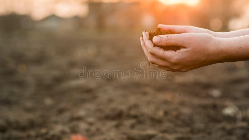 As mãos do fazendeiro guardam um punhado da terra fértil, close-up fotografia de stock royalty free