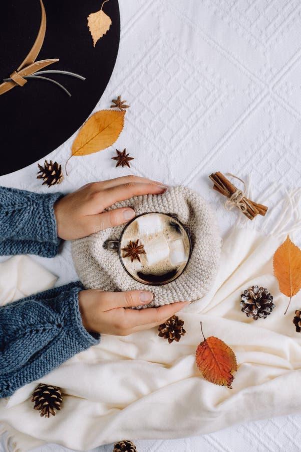 As mãos do ` s das mulheres guardam um copo com café quente com marshmallows, lenço, cookies, colisões e folhas de outono imagens de stock