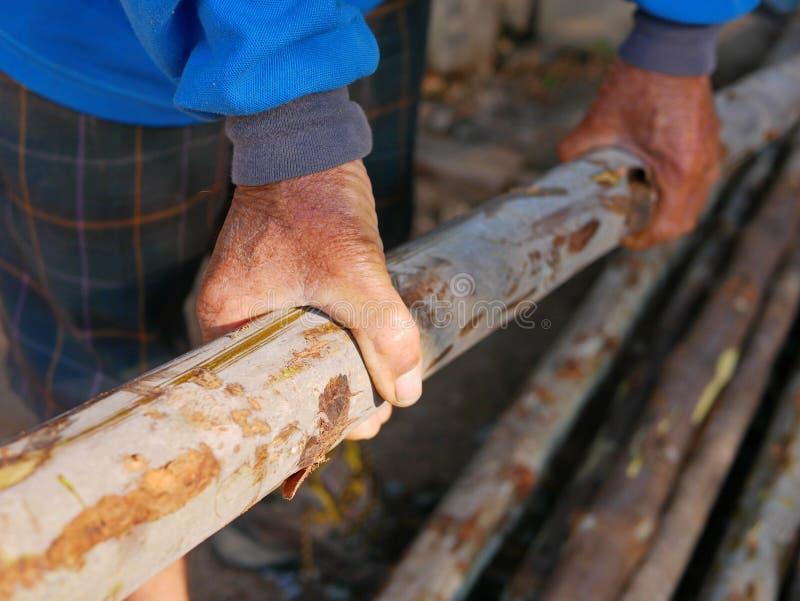 As mãos do trabalhador idoso que agarram e que levam logs das madeiras em uma loja de madeira do log fotos de stock royalty free