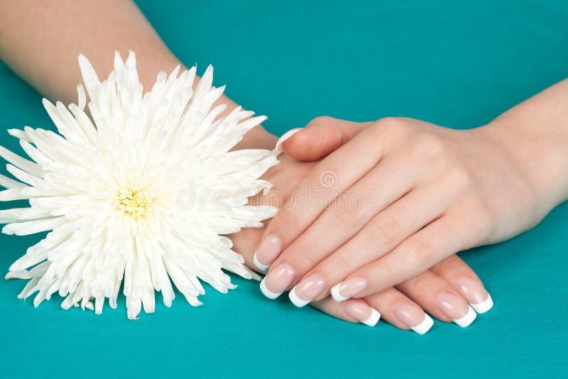 As mãos e os pregos da mulher bonita com maníaco francês fotos de stock royalty free