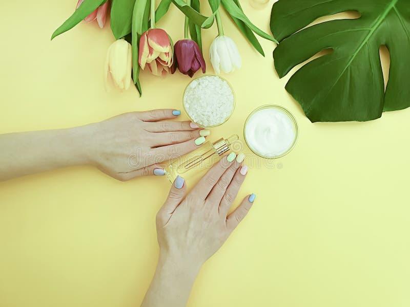 As mãos fêmeas desnatam a tulipa cosmética da flor da essência em um fundo colorido imagens de stock royalty free